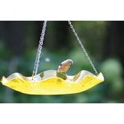 Birds Choice Acrylic Hanging Bird Bath; Yellow