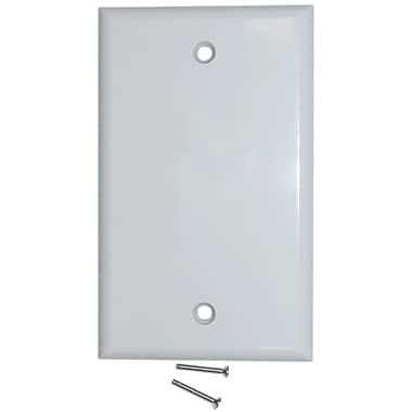 Digiwave Blank Wall Plate with Screws, 0.1