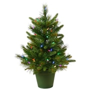 Vickerman Cashmere 2' Green Pine Artificial Christmas Tree 50 LED Multi-Colored Lights