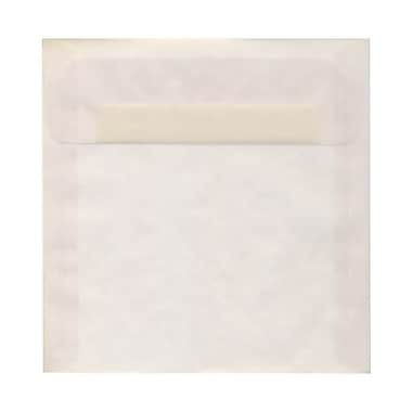 JAM Paper® 9.5 x 9.5 Square Envelopes, Clear Translucent Vellum, 250/Pack (2851357H)
