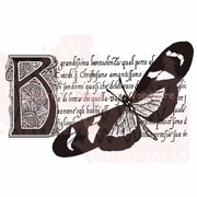 Woodware Craft Collection Stamps Clear 5.5 x 3.5 inch, Butterfly Botanical