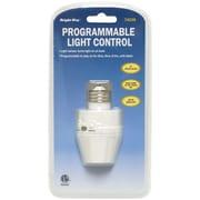 Bright Way Outdoor/Indoor Programmable Light