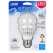 FeitElectric 60W LED Light Bulb