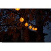 Allsop Home and Garden Aurora Glow Solar 6 Light String Light; Clear with Amber LED