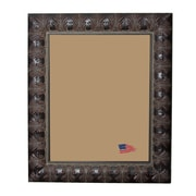 Rayne Frames Shane William Feathered Accent Picture Frame; 20'' x 10''