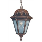 Special Lite Products Floral Medium 1 Light Outdoor Hanging Lantern; Verde Green