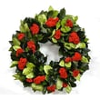 Dried Flowers and Wreaths LLC Holiday Celosia Wreath