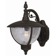 Special Lite Products Vista Top Mount Outdoor Wall Lantern; Frosted Umber