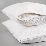 Smart Silk Pillow Protector; Standard