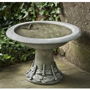 Campania International, Inc Dragonfly Small Birdbath; Alpine Stone