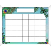 PTM Images Peacock Wall Mounted Calendar/Planner Glass Board, 2' x 2'