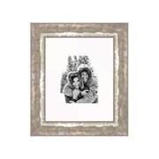 Frames By Mail 16'' x 20'' Frame in Cocoa and Moss Silver