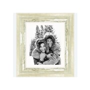Frames By Mail 8'' x 10'' Frame in Ivory and Moss Silver