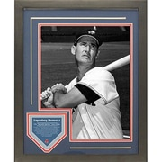 Steiner Sports Ted Williams Legendary Moments Framed Collage