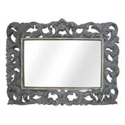 Legion Furniture Resin Mirror