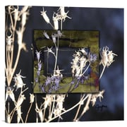 Global Gallery Winter Thistle by Suzanne Silk Graphic Art on Wrapped Canvas