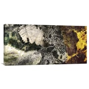 Global Gallery Elemental I by Suzanne Silk Graphic Art on Wrapped Canvas