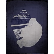 Graffitee Studios Shells Fiber Conch in Indigo Graphic Art on Wrapped Canvas