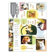 Preventive 3-Up Laser Postcards, Animals are...