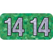 MAP Brand Holographic End-Tab Year Labels, 2014, Green
