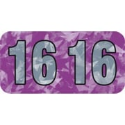 Medical Arts Press® Holographic End-Tab Year Labels, 2016, Violet