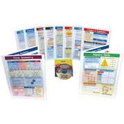 Mastering Math Visual Learning Guides Set Grade 8 - 10