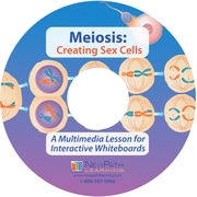 NewPath Learning Meiosis Multimedia Lesson, Single Building Site License