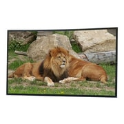 """Elite Screens® DIY Pro DIY133H1 Portable Outdoor 133"""" Projector Screen"""
