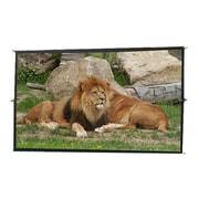 """Elite Screens® DIY Pro DIY193V1 Portable Outdoor 193"""" Projector Screen"""