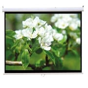 Homevision Technology TygerClaw Manual Projection Screen; 84'' H x 84'' W