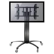Homevision Technology TygerClaw Mobile TV Floor Mount for 32''-55'' Flat Panel Screens