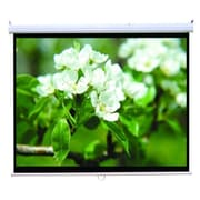 Homevision Technology TygerClaw Manual Projection Screen; 100'' H x 100'' W
