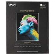 Epson® Hot Press Bright Fine Art Paper, Smooth Matte, 17 x 22, Bright White, Each (S042331)