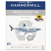 Hammermill® Great White® 100 Recycled Copy Paper, 8 1/2 x 11, White, 5000/Carton (86790)