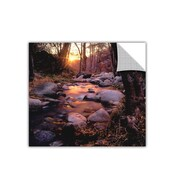 "ArtWall 'Domeland Wilderness' Art Appeelz Removable Wall Art Graphic 14"" x 14"" (0uhl024a1414p)"