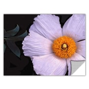 "ArtWall 'Wild Hibiscus' Art Appeelz Removable Wall Art Graphic 18"" x 24"" (0uhl044a1824p)"