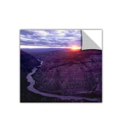 "ArtWall 'Green River Dinosaur' Art Appeelz Removable Wall Art Graphic 14"" x 14"" (0uhl077a1414p)"