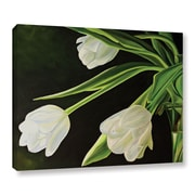 """ArtWall 'White Tulips' Gallery-Wrapped Canvas 14"""" x 18"""" (0gro056a1418w)"""