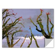 "ArtWall ""Yuma Desert Spring"" Art Appeelz Removable Graphic Wall Art 18"" x 24"" (0uhl121a1824p)"
