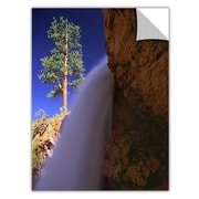 "ArtWall 'Creek Fall At Bryce' Art Appeelz Removable Wall Art Graphic 24"" x 32"" (0uhl130a2432p)"