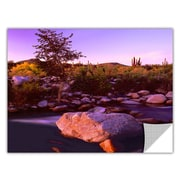 "ArtWall 'Deer Creek Evening' Art Appeelz Removable Wall Art Graphic 36"" x 48"" (0uhl157a3648p)"