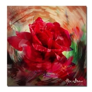 Ready2hangart Rose in Bloom' Oversized Graphic Art on Canvas