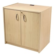 Paragon Furniture 2 Door Storage Cabinet; River Cherry