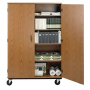 Paragon Furniture 2 Door Storage Cabinet; Kensington Maple