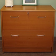 Wildon Home   2-Drawer File Cabinet; Cherry