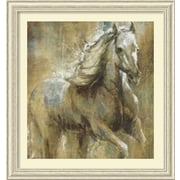 Amanti Art 'Boundless Beauty One' by Selina Taylor Framed Painting Print