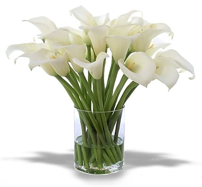 Distinctive Designs Waterlook Silk Calla Lilies in Clear Glass Cylinder; Cream-White WYF078277699919