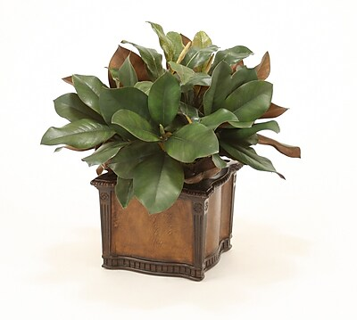 Distinctive Designs Silk Magnolia and Dried Badam Hearts Desk Top Plant in Planter WYF078277701135