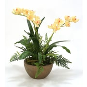 Distinctive Designs Silk Orchids w/ Fern Mix in Bowl
