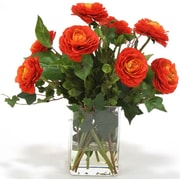 Distinctive Designs Waterlook Ranunculus with Ivy and Basil in Square Glass